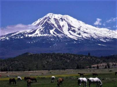 Mystical Mt Shasta